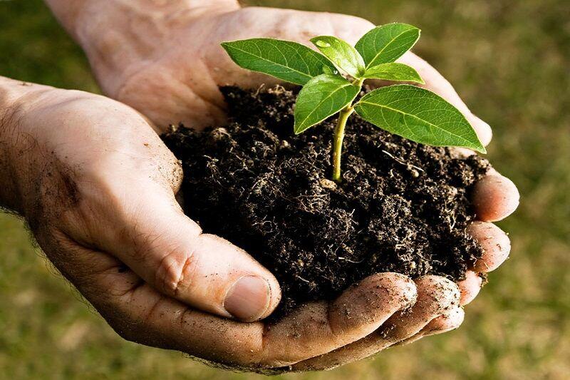 پیش نویس آیین نامه اجرایی قانون حفاظت از خاک