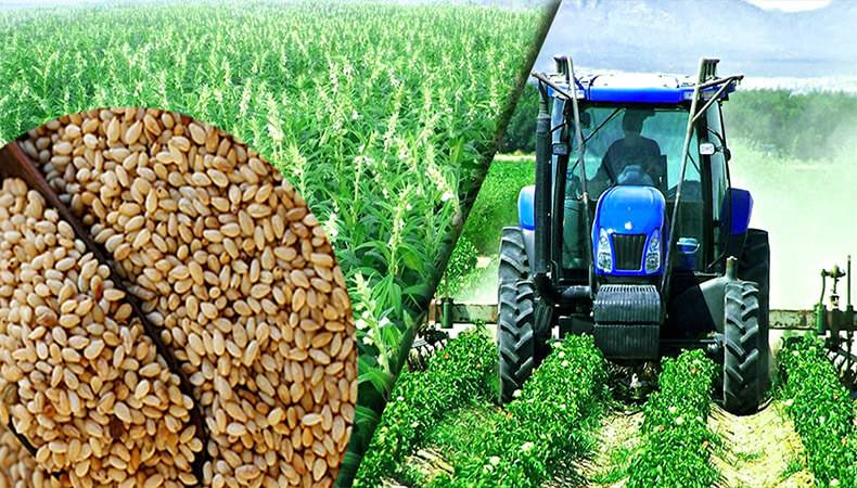درخواست اختصاص مبلغ 20 هزار میلیارد ریال تسهیلات بانکی برای تهیه و تدارک نهاده های کشاورزی